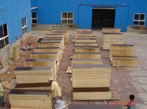 黄冈酚醛覆膜建筑模板生产商 双十一批发价
