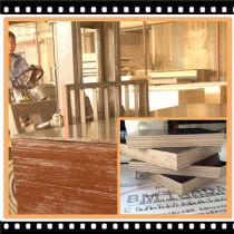 随州金亨杨木建筑模板批发价格 厂家供应质量