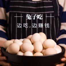 兔子吃-边吃,边赚钱,古法红糖,土鸡蛋,百花土蜂蜜,水果,咖啡普洱茶