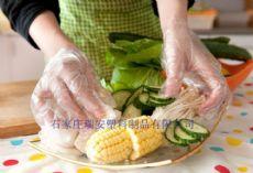 食品卫生薄膜手套生产厂家