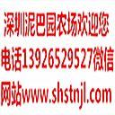 深圳市泥巴园农场发展有限公司