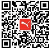 【彪马厂家货源】北京彪马高档鞋批发|天津彪马高档鞋批发图片