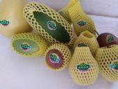 水果一手货源果园现摘现发一件代发招代理