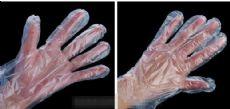 pe塑料手套生产厂家