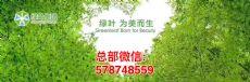 苏州绿叶,绿叶大生活,绿叶爱生活,苏州绿叶日用品有限公司