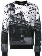 杜嘉班纳Dolce&Gabbana 男装长袖卫衣风景飞鸟
