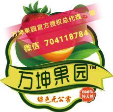 万坤果园水果微商代理和颐和果园微商哪个高级代理更靠谱!团队更牛逼图片