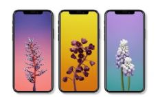 请问高仿iPhone X怎么买,我想买一台高仿苹果多少钱?
