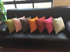 专业生产印花抱枕,图案新颖,欢迎朋友们批发、选购!