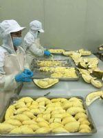 A级泰国金枕冷冻无核榴莲肉3KG,泰国自有工厂