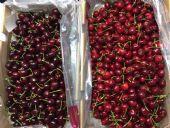 进口生鲜水果车厘子批发直供2019智利樱桃产地货源供应商