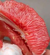 水果微商一手货源 产地基地直发 果园直发 现摘现发 免费加盟代理图片