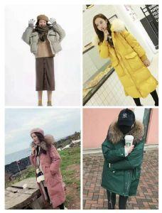 冬季时尚韩版欧版羽绒服