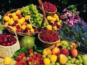 给大家普及下水果货源怎么找,价格便宜的多少钱