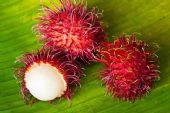泰国水果批发市场在哪里,泰国水果进口代理一手货源