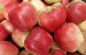 水果原产地直发货源,普及下一手水果哪里买价格是多少钱