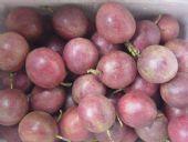 广西北流果园直发 酸甜美味紫色百香果 支持一件代发