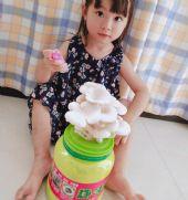 趣味菇DIY蘑菇送给孩子一份特殊的礼物网红蘑菇