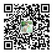 香港美心流心奶黄月饼【官方正品】厂家大量现货批发!!