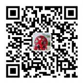 盛鑫莆田厂家直销阿迪达斯,耐克,新百伦,诚招代理加盟支持一件代发图片