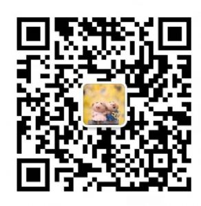 UGG雪地靴 皮毛一体工厂批发雪地靴  豆豆鞋 招代理图片