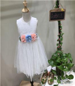 深圳童装批发货源朵娜公主女童连衣裙