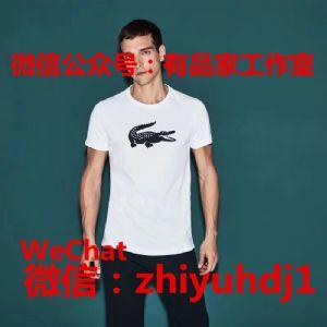 供应上海Lacoste法国鳄鱼男装夏季T恤代工厂直销货源 批发