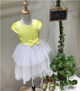 广州朵娜公主女童公主裙厂家直销