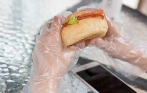 塑料一次性餐饮手套价格