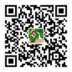 莆田实力厂家直销耐克阿迪匡威万斯等童鞋运动鞋诚招微信代理图片