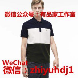 工厂货Lacoste法国鳄鱼男装Polo衫批发货源 一件代发货图片