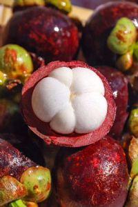 水果一件代发 果园现摘现发 水果微商一手货源